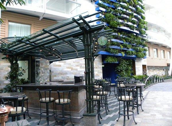 Trellis Bar on Oasis of the Seas